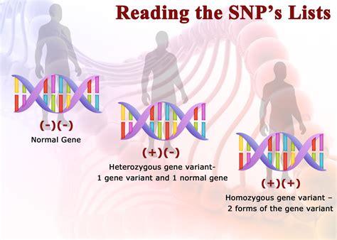 Gene Snp Detox Test by Genetic Testing Drjockers