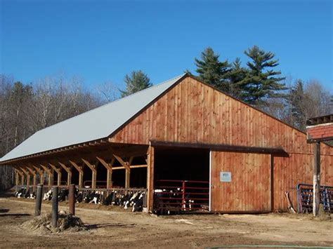 ideal cattle sheds  cattle barn  shed cattle farming