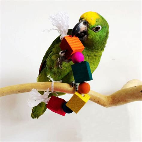 bird swings and toys pet bird parrot swing toys cage chew bite parakeet