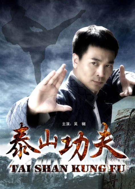 film china kung fu taishan kung fu 2009 china movie poster film cast