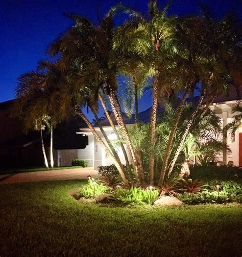 Photos For Tropical Landscape Lighting Yelp Tropical Outdoor Lighting