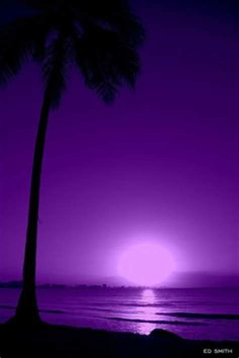 shades of purple http goddessofsax tumblr com post shades of purple http goddessofsax tumblr com post