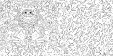 secret garden coloring book buzzfeed the drawing that sold a million books smartup