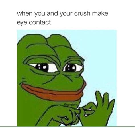 Memes Frog - 18 best sad frog images on pinterest frogs dankest