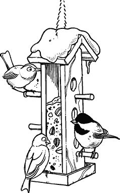 winter coloring book for adults grayscale line coloring book books winter bird feeder m 124 rubber sts decorative
