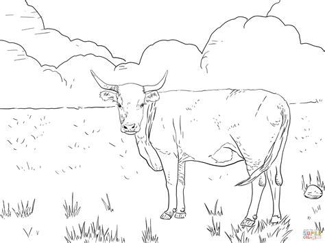 cow ears coloring page encantador dibujos de toros para imprimir y colorear
