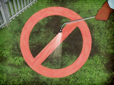Come Attirare Le Api In Giardino by Come Attirare Le Api 10 Passaggi Illustrato