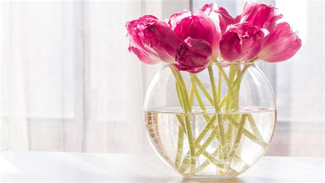 Which Flowers Last The In A Vase by 3 Ways To Make Cut Flowers Last Longer Rodale S Organic