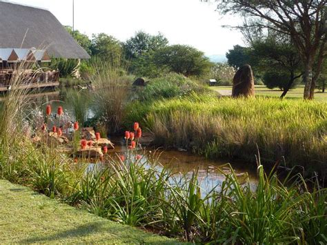 National Botanical Garden Pretoria National Botanic Garden