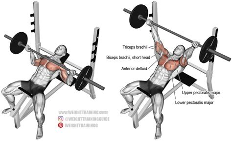 barbell bench press exercise incline reverse grip barbell bench press exercise guide and videos