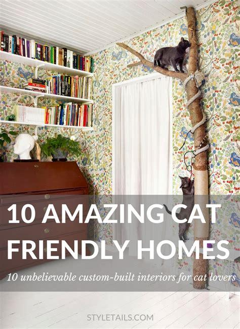 cat friendly house design unbelievable cat friendly house design from japan house design