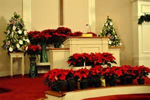 decorating pictures poinsettias and decorations around church podium brenna d flickr