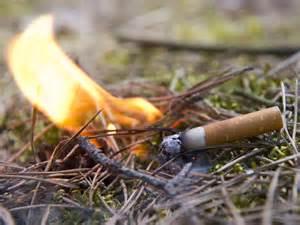 offenes feuer im garten baden württemberg waldbrandgefahr rauch und grillverbot beachten ruhr