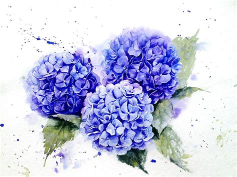 poetic amp realistic flowers watercolor paintings fubiz media