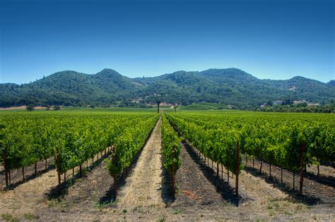 Photo Napa Valley by Guide To A Three Day Weekend In Napa 171 Cbs Sacramento