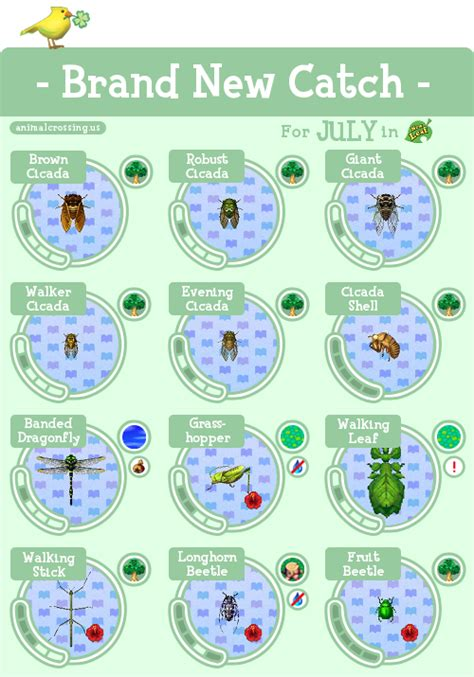 acnl shoodle guide 3ds animal crossing guide tumblr
