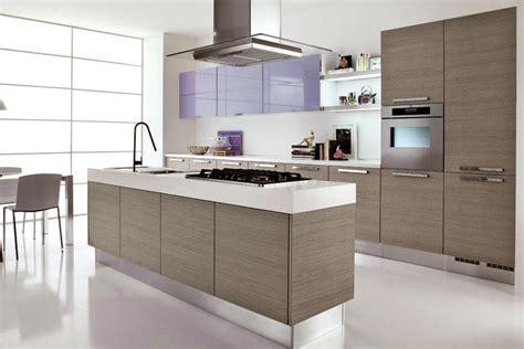 cucine grigio rovere colore parete cucina rovere grigio rovere europeo carta