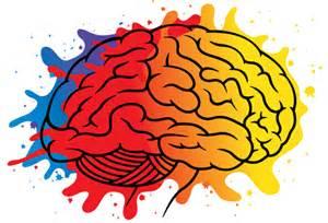 what color are brains taller experimental de color