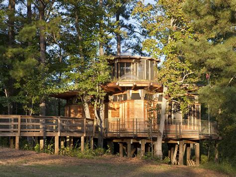 treehouse homes timber home design lakefront treehouse modern house