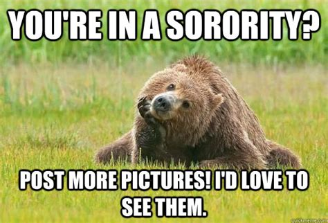 Bear Meme - grizzly bear facts memes