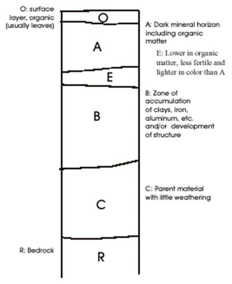 Soil Horizon Geography Diagram Wiring Diagram