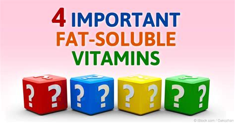 exles of healthy fats soluble vitamins functions best vitamin 2017