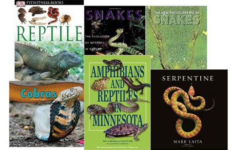 american snakes books snake books cobra reading room cobras org