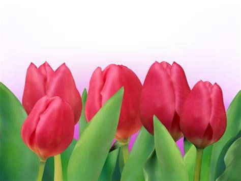 imagenes rosas brillantes tulipanes brillantes 01 vector descarga gratuita de