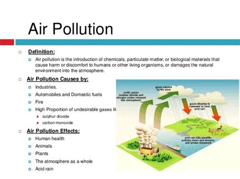 Cause And Effect Essay Pollution by Environmental Pollution Essay
