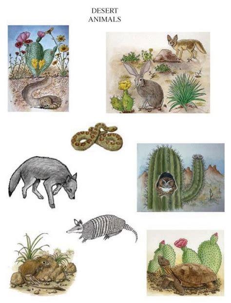 printable diorama animals desert animals to include in your desert habitat diorama