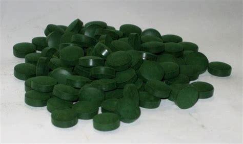 Granola Green Tea 1kg bio spirulina platensis tabletten kaufen 1kg