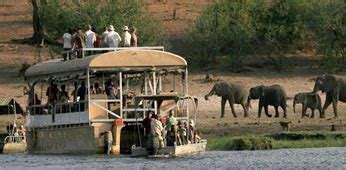 boat cruise maun chobe safari lodge official website botswana safaris