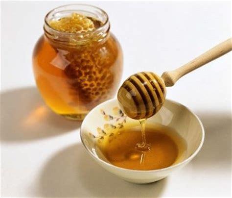 miele alimento miele tutte le propriet 224 e i benefici di un alimento