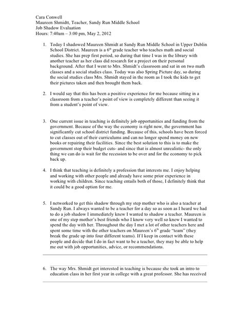 Career Reflective Essay Exles by Shadow Reflection 1