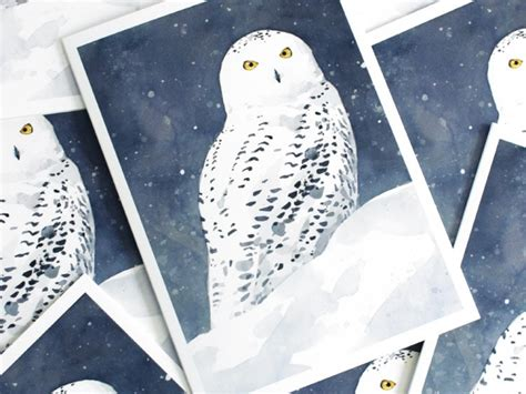 Set Snowy snowy owl card set david scheirer watercolors