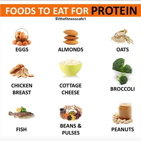 i protein foods 10 healthy foods you should be bro