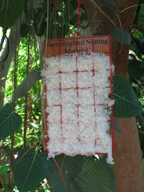 hummingbird houses for nesting hummingbird nesting