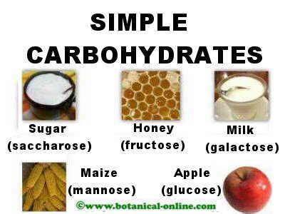 a simple carbohydrates simple carbohydrates