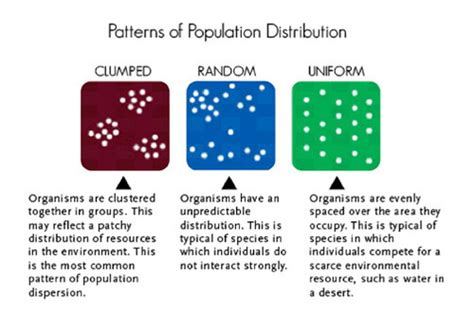 most common dispersion pattern in nature populations ck 12 foundation