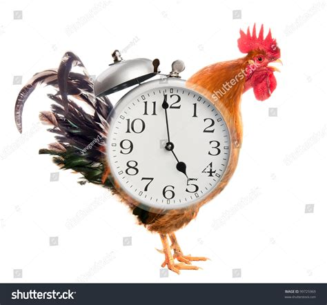 collage rooster alarm clock stock photo 99725969