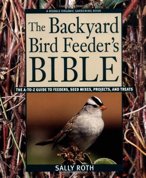 backyard bird feeding tips life after 60 living life with joylife after 60 living