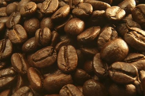 Black Coffee Robusta Roasted robusta roasted coffee bean products thailand robusta roasted coffee bean supplier