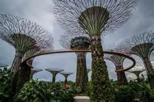 The Botanic Gardens Singapore Singapore Botanic Gardens Picture Of Singapore Botanic Gardens Singapore Tripadvisor