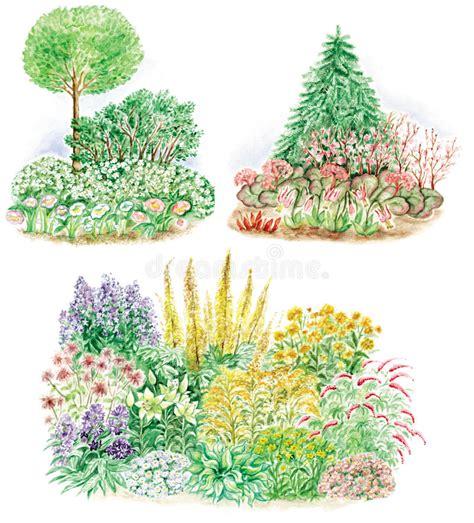 disegno giardino disegno giardino delle basi fiorite illustrazione di