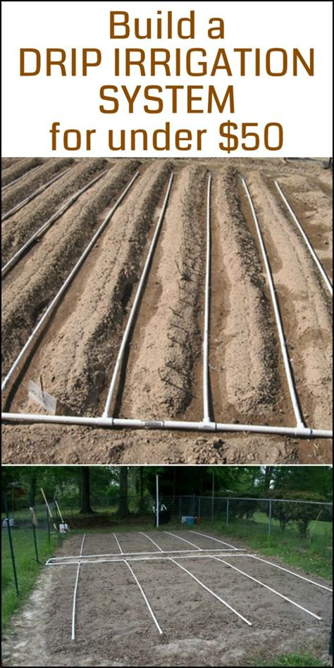 Need A Drip Irrigation System In Your Vegetable Garden Vegetable Garden Irrigation Systems Design