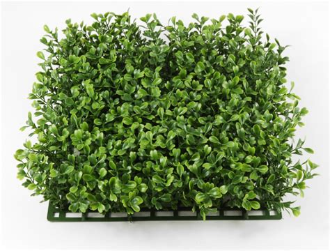 Boxwood Mats by Boxwood Mat Artificial 10x10