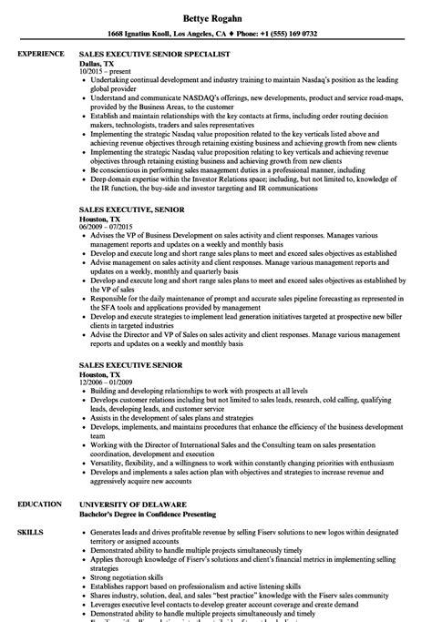 senior resume sles sales executive senior resume sles velvet