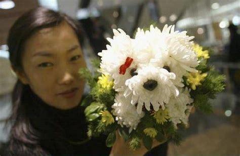 puppy flower arrangement flowers