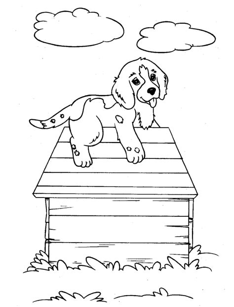 coloring pages of dogs and cats together coloring pages free printable coloring pages for