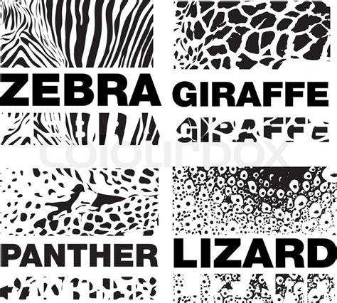 illustration of animal skin texture vector colourbox animal skin pattern set of leopard zebra panter lizard